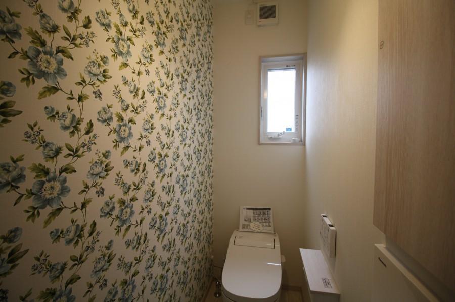 トイレの輸入壁紙